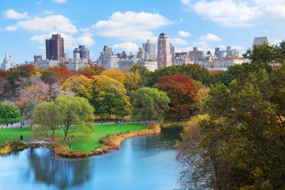 nyc-herbst